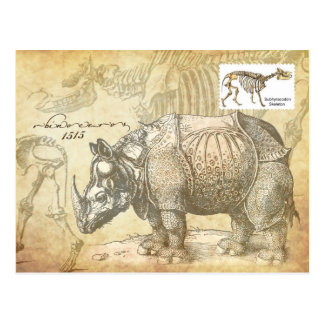 16th century Rhinoceros and skeleton Postcard