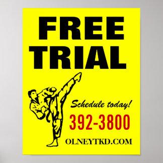 16x20 Free Trial karate poster