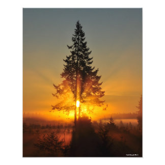 16X20 Sunrise in the Great Northwest Photo Print