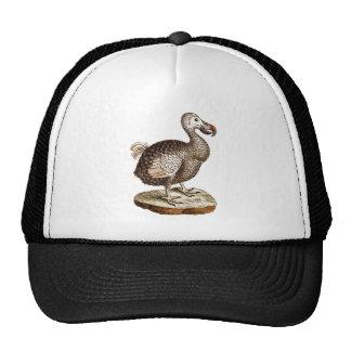 1700s retros de los pájaros de los Dodos del pájar Gorras