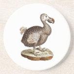 1700s retros de los pájaros de los Dodos del pájar Posavasos Manualidades