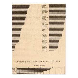 170 Wheat, buckwheat, cotton/acre Post Card