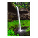 171 Feet Silver Falls OR Postcard