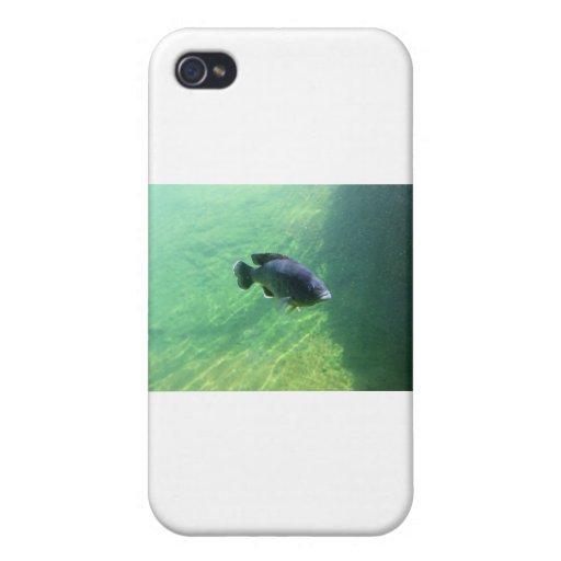 171 iPhone 4/4S CASE