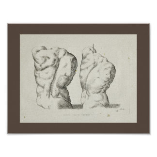 1747 Artistic Anatomy Male Torso Art Print