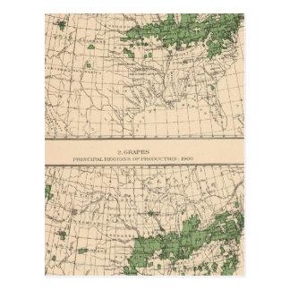 175 cerezas, uvas, regiones principales tarjetas postales