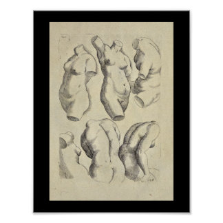 1770 Artistic Anatomy Female Torso Art Print