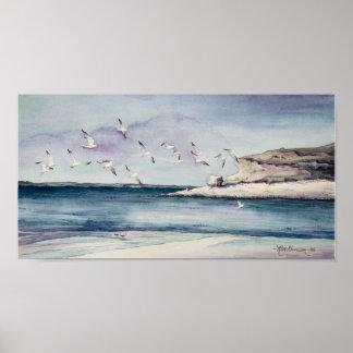 1774 gaviotas en la impresión del arte de la playa póster