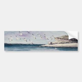 1774 gaviotas en la playa de Sandy Pegatina Para Auto