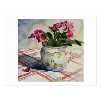 1790 African Violets in Blue Pot Postcard