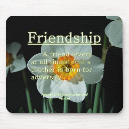 17:17 de los proverbios de la amistad tapete de raton
