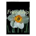 17:17 de los proverbios de la amistad tarjetón