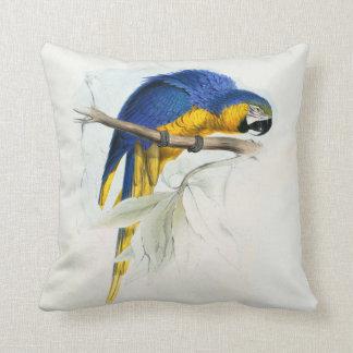#17-Blue y maccaw amarillo Cojín