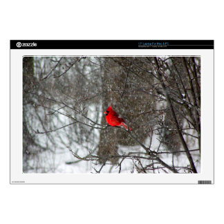 17 inch laptop skin with photo of male cardinal