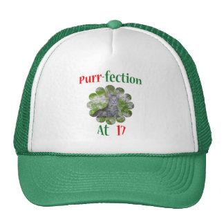 17 Purr-fection Hat