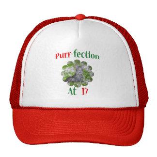 17 Purr-fection Trucker Hats