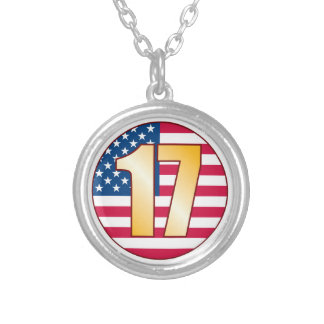 17 USA Gold Silver Plated Necklace