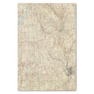 """17 Waterbury sheet 10"""" X 15"""" Tissue Paper"""