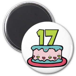 17 Year Old Birthday Cake Refrigerator Magnet