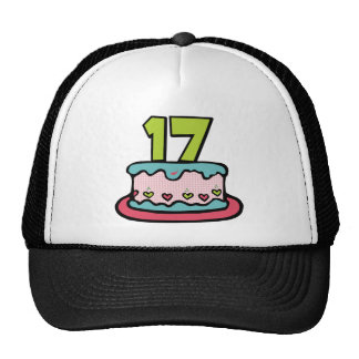 17 Year Old Birthday Cake Trucker Hat
