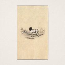 1800s Vintage Persian Sheep Old Illustration Lamb Business Card