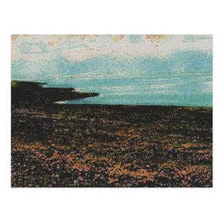 183c postcard