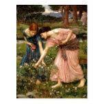 1849-1917) frunces sumario de John William Waterho Postales