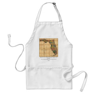 1856 Map of the State of Florida by Columbus Drew Aprons