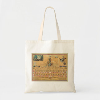 1862 Federal Government American Union Diagram Tote Bags