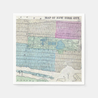 1870 Map New York City Central Park Napkin