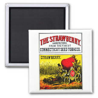 1874 The Strawberry Cigar 2 Inch Square Magnet