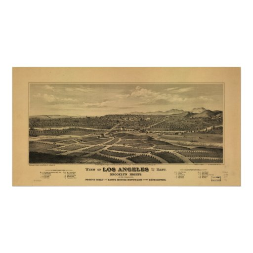1877 Brooklyn Heights Los Angeles CA Panoramic Map Poster