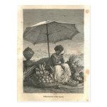 1877 impresión Río Janeiro, tierra y su gente Postal