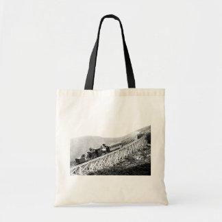 1880 Passengers trains at work Tote Bag