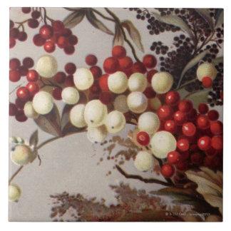 1882: Bayas tradicionales del acebo Teja Ceramica