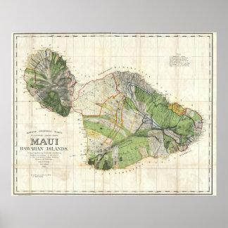 1885 De Witt Alexander Wall Map of Maui, Hawaii Poster