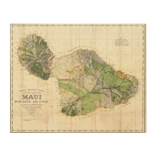 1885 De Witt Alexander Wall Map of Maui, Hawaii Wood Wall Art