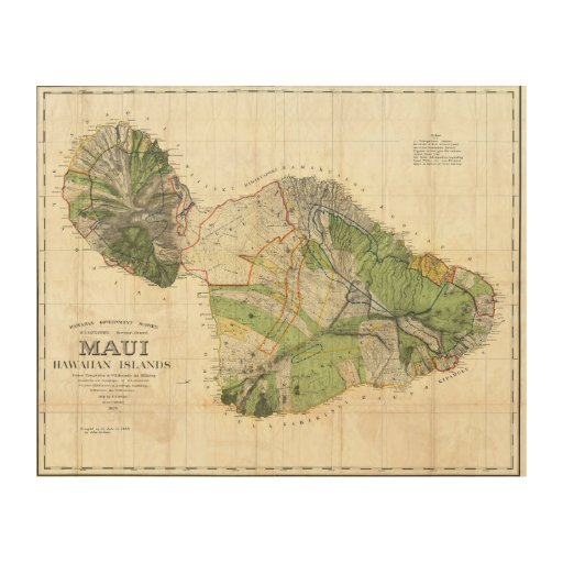 1885 De Witt Alexander Wall Map of Maui, Hawaii Wood Wall Art