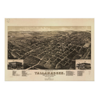 1885 Tallahassee, FL Birds Eye View Panoramic Map Poster
