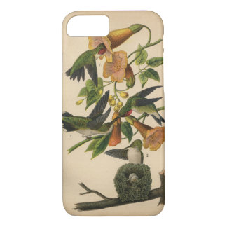 1890 Ruby-throated Hummingbird iPhone 7 Case