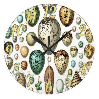 1897 ANIMAL EGGS from Meyers Konversations-Lexikon Clock