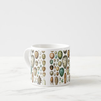1897 ANIMAL EGGS from Meyers Konversations-Lexikon Espresso Cup