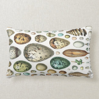 1897 ANIMAL EGGS from Meyers Konversations-Lexikon Throw Pillow