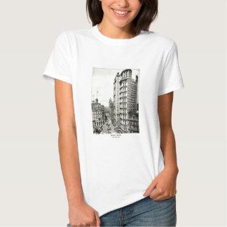 1898 Park Row, New York City T-Shirt