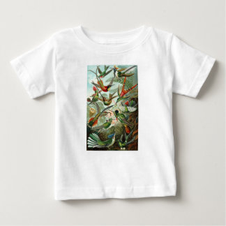 1899 Hummingbird Species Art Forms of Nature Print Baby T-Shirt