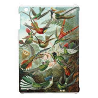 1899 Hummingbird Species Art Forms of Nature Print iPad Mini Cover