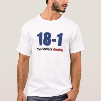 18-1 conclusión perfecta playera