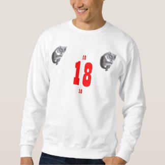 18 gatitos del cumpleaños suéter
