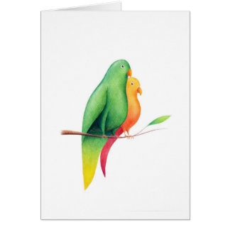 18 – Pappagalli Greeting Cards