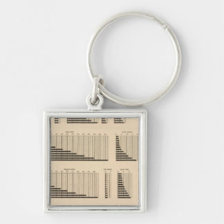 18 Population each state Key Chains